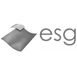 essex services group